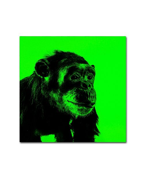"""Trademark Global Claire Doherty 'Chimp No 5' Canvas Art - 14"""" x 14"""""""