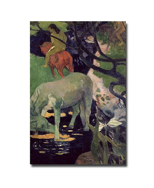 "Trademark Global Paul Gauguin 'The White Horse 1898' Canvas Art - 47"" x 30"""
