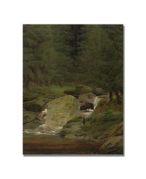 """Trademark Global Caspar Friedrich 'Evergreens by the Waterfall' Canvas Art - 24"""" x 18"""""""