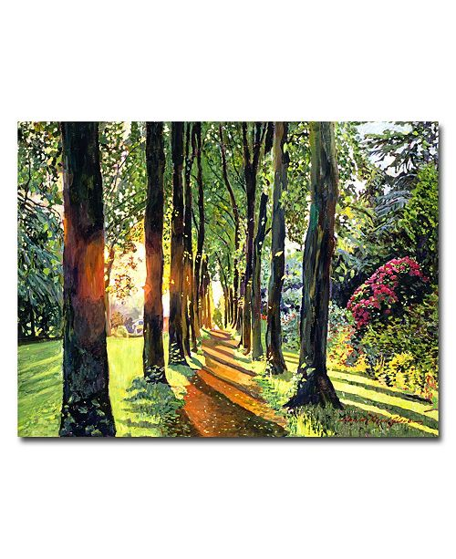 "Trademark Global David Lloyd Glover 'Forest of Enchantment' Canvas Art - 47"" x 35"""