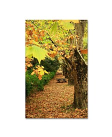 "Beata Czyzowska Young 'Picnic Table And Trees' Canvas Art - 24"" x 16"""