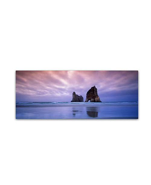 "Trademark Global David Evans 'Archway Islands-Wharariki Beach-NZ' Canvas Art - 24"" x 8"""