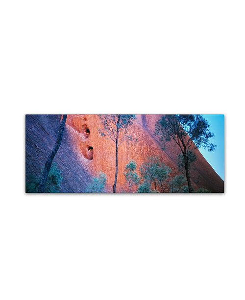 "Trademark Global David Evans 'Uluru Up Close' Canvas Art - 47"" x 16"""
