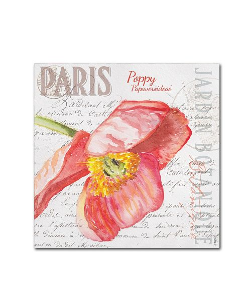 "Trademark Global Jennifer Redstreake 'Paris Botanique Red Poppy' Canvas Art - 18"" x 18"""