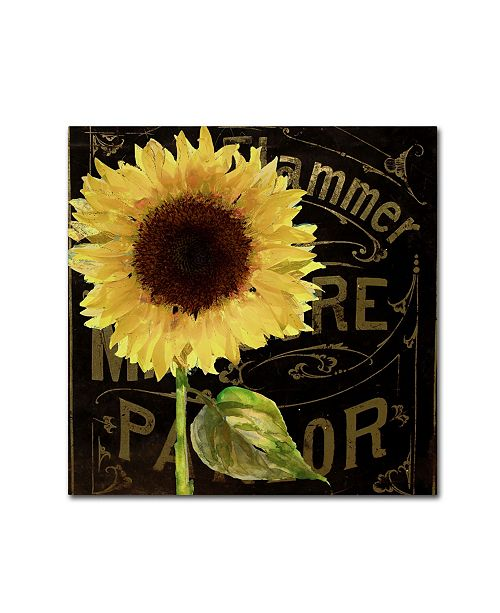 "Trademark Global Color Bakery 'Sunflower Salon I' Canvas Art - 35"" x 35"""