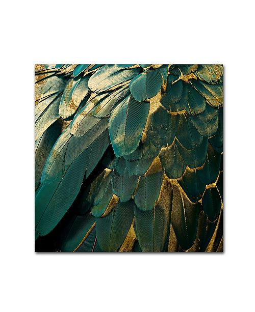 """Trademark Global Color Bakery 'Feather Glitter' Canvas Art - 35"""" x 35"""""""