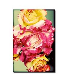 "Ariane Moshayedi 'Rustic Roses' Canvas Art - 16"" x 24"""