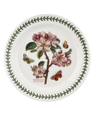 Botanic Garden Flowering  Dinner Plate