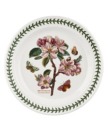 Portmeirion Botanic Garden Flowering  Dinner Plate