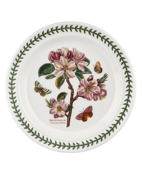 Portmeirion Botanic Garden Flowering  Dinner Plate