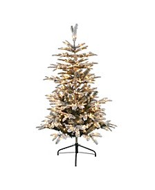 International 4.5 ft. Pre-Lit Flocked Aspen Fir Artificial Christmas Tree with 250 UL-Listed Clear Lights