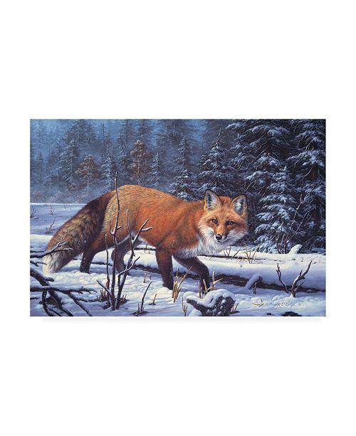 "Trademark Global R W Hedge Winter Charm Canvas Art - 36.5"" x 48"""