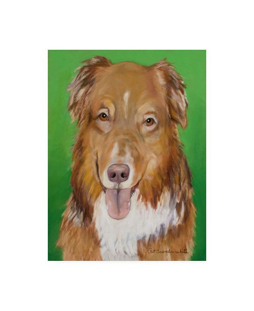 "Trademark Global Pat Saunders-White Chief Green Canvas Art - 19.5"" x 26"""