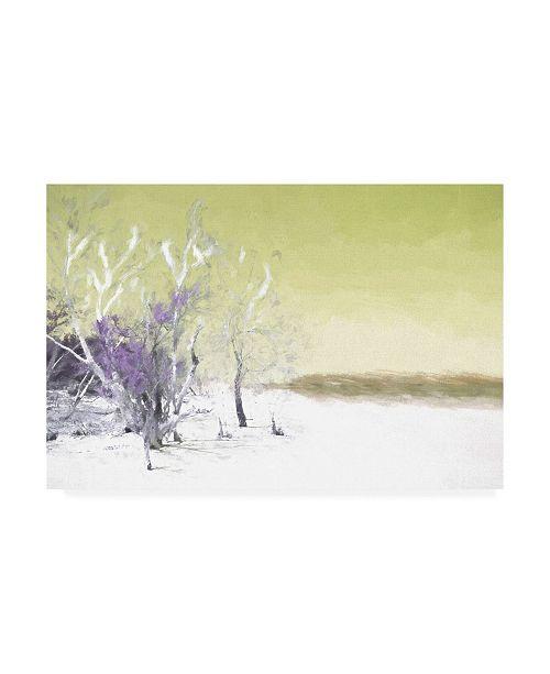 "Trademark Global Philippe Hugonnard Lime Green Memories Canvas Art - 19.5"" x 26"""