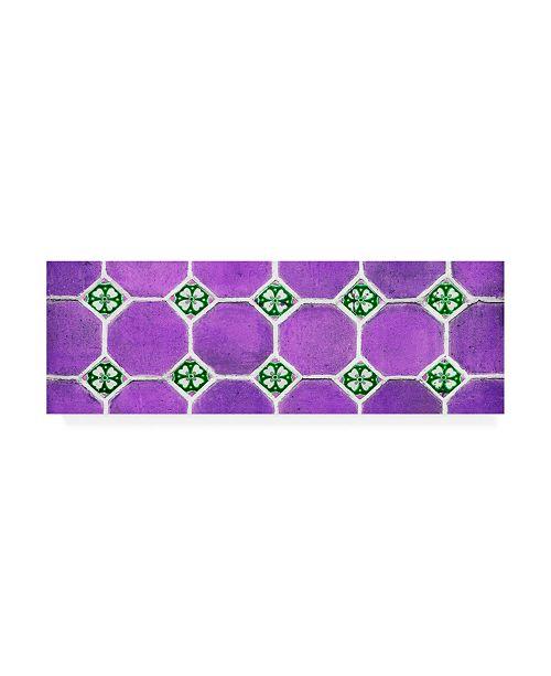 "Trademark Global Philippe Hugonnard Viva Mexico 2 Wall of Purple Mosaics Canvas Art - 19.5"" x 26"""