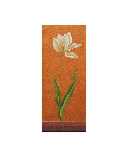"Trademark Global Pablo Esteban Single White Flower on Orange Canvas Art - 15.5"" x 21"""