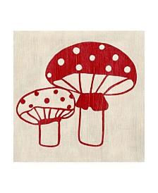 """Chariklia Zarris Best Friends Mushrooms Canvas Art - 36.5"""" x 48"""""""