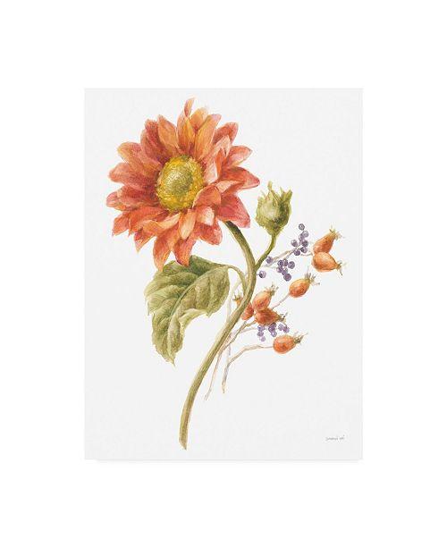 "Trademark Global Danhui Nai Floursack Autumn II on White Canvas Art - 27"" x 33.5"""