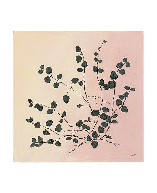 "Trademark Global Julia Purinton Botanical Study VII Blush Canvas Art - 19.5"" x 26"""