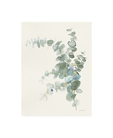 "Danhui Nai Scented Sprig III Cool Canvas Art - 15.5"" x 21"""