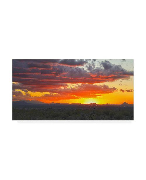 """Trademark Global Mitch Catanzaro Sonoran Desert Sunset Canvas Art - 36.5"""" x 48"""""""