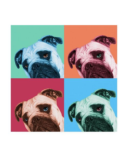 """Trademark Global Jon Bertell Que Pasa Pop Canvas Art - 15.5"""" x 21"""""""