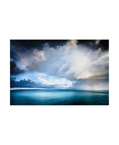 "Trademark Global Lynne Dougla Skyestorm 2 Canvas Art - 15.5"" x 21"""
