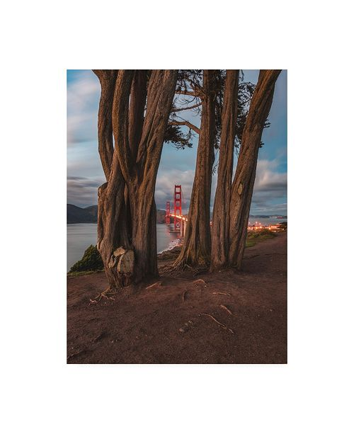 "Trademark Global Bruce Gett Between the Trees Canvas Art - 27"" x 33.5"""