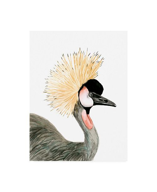 "Trademark Global Naomi Mccavitt Watercolor Crested Crane Canvas Art - 20"" x 25"""