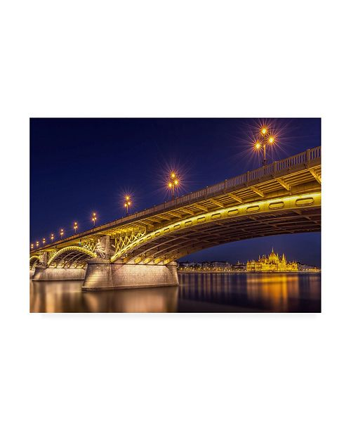 "Trademark Global Thomas D Morkeberg A View of Budapest Canvas Art - 20"" x 25"""