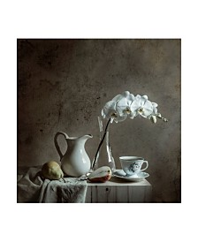 "Margareth Perfoncio Old Wall Canvas Art - 20"" x 25"""
