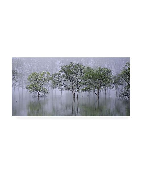 "Trademark Global Teruo Araya Beautiful Morning Canvas Art - 20"" x 25"""