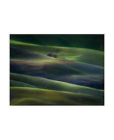 "Marek Boguszak Palette of Winter Dusk Canvas Art - 15"" x 20"""
