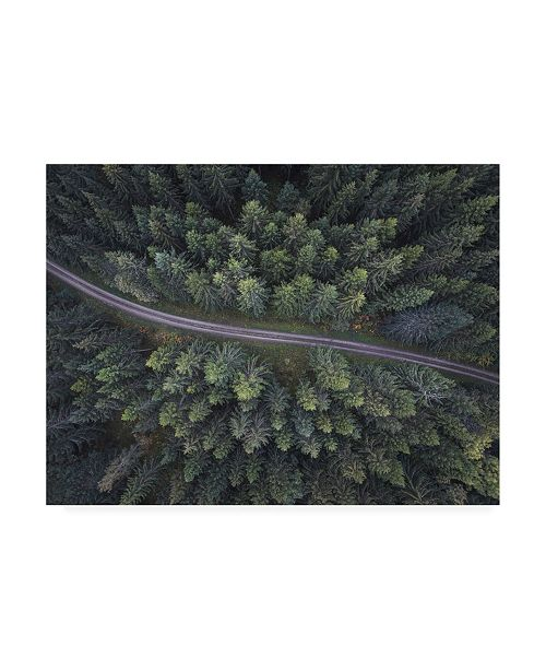 """Trademark Global Christian Lindsten Small Road Through the Forest Canvas Art - 20"""" x 25"""""""