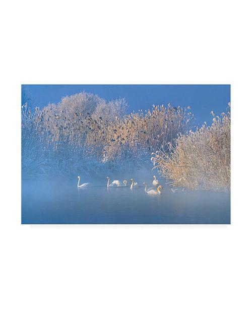 """Trademark Global Hua Zhu Blue Swan Lake Canvas Art - 37"""" x 49"""""""