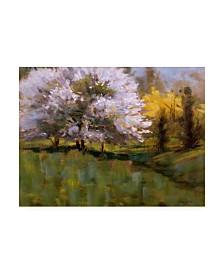"Michael Budden Spring Flowers Blossoming Canvas Art - 37"" x 49"""