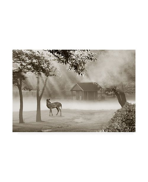 "Trademark Global Monte Nagler Deer in Morning Mist Canvas Art - 20"" x 25"""
