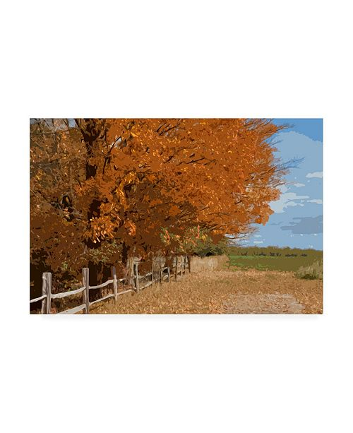 "Trademark Global Monte Nagler Fall Color Foliage Canvas Art - 20"" x 25"""