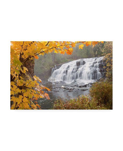 "Trademark Global Monte Nagler Lower Bond Falls in Autumn Bruce Crossing Mi Color Canvas Art - 20"" x 25"""