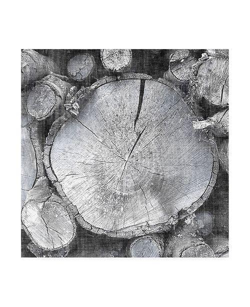"Trademark Global John Butler Logging Light VI Canvas Art - 20"" x 25"""