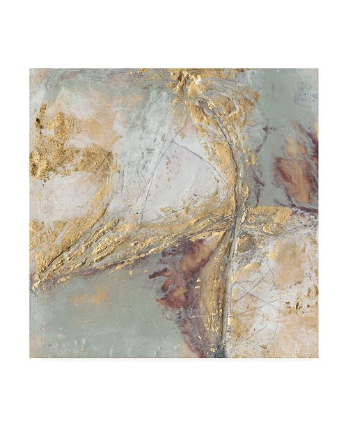 "Trademark Global Jennifer Goldberger Gilded Circuit I Canvas Art - 15"" x 20"""