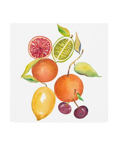 "Trademark Global Chariklia Zarris Harvest Medley III Canvas Art - 27"" x 33"""