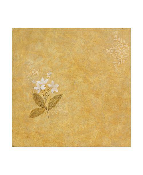 """Trademark Global Pablo Esteban White Flower Stencil Canvas Art - 19.5"""" x 26"""""""