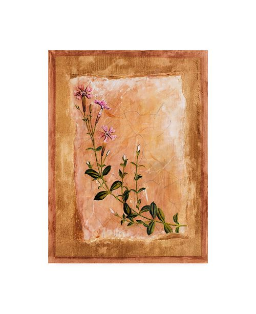 "Trademark Global Pablo Esteban Pink Flowers Painting Canvas Art - 36.5"" x 48"""