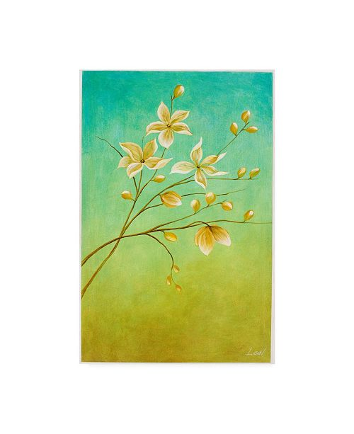 "Trademark Global Pablo Esteban White Flower Branch 2 Canvas Art - 19.5"" x 26"""