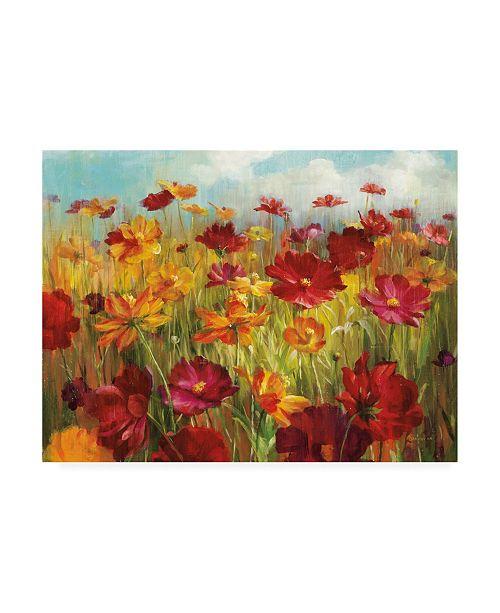 "Trademark Global Danhui Nai Cosmos in the Field Canvas Art - 19.5"" x 26"""