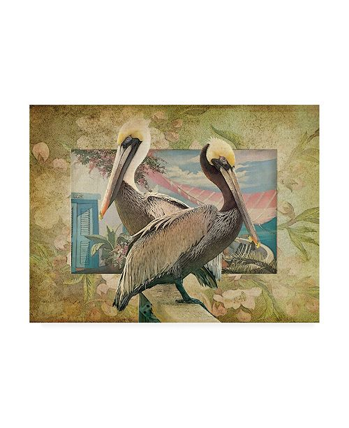 "Trademark Global Steve Hunziker Pelican Paradise IV Canvas Art - 15.5"" x 21"""
