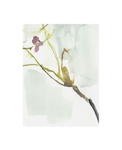 "Trademark Global Jennifer Goldberger First Blooms VI Canvas Art - 15.5"" x 21"""