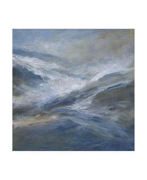 "Trademark Global Sheila Finch January Seas Canvas Art - 19.5"" x 26"""