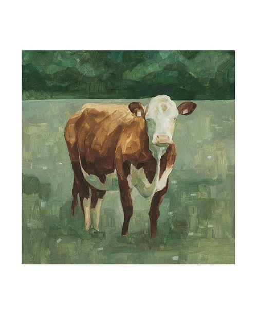 "Trademark Global Emma Scarvey Hereford Cattle I Canvas Art - 19.5"" x 26"""